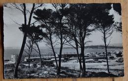 """13 : Marseille - Montredon - Vue Générale Des H.L.M. - """"La Verrerie"""" - CPSM Format CPA - (n°13753) - Zonder Classificatie"""