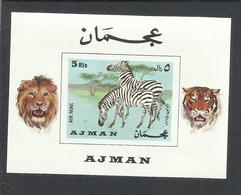 UNITED ARAB EMIRATES AJMAN 1969 FAUNA ANIMALS ZEBRA LIONS LEONI BLOC FEUILLET BLOCK SHEET BLOCCO FOGLIETTO MNH - Ajman