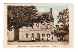 """89 YONNE - CEZY """"Les Beaux Ombrages"""" (voir Descriptif) - France"""