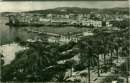 SPAIN - MALLORCA - PALMA - PASEO DE SAGRERA Y EL PUERTO - DESDE LA LONJA - FOTO CASA PLANAS - 1950s/60s (BG1884) - Palma De Mallorca