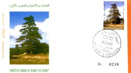 "Maroc,FDC 2002, TP N° 1303 "" Forêts Et Arbres Au Maroc ; Le Cèdre ""Morocco;Marruecos - Maroc (1956-...)"
