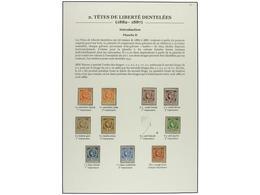 * HAITI. Sc.7/20. 1882-87. Dos Páginas De Album Con Sellos En Nuevo De La Plancha II Y III Con Las Dos Impresiones. Conj - Sin Clasificación