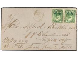 HAITI. Sc.24 (2). 1888. JEREMIE A NEW YORK. 5 Cent. Verde (2), Mat. JEREMIE/HAITI. Manuscrito 'Por Voie P.Pe' (Port Au P - Sin Clasificación