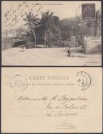 """Colonies Françaises - CP Guinée Nº146 """" Dakar - Un Coin Du Jardi Public """"  (5G) DC1186 - French Guinea (1892-1944)"""