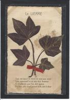 CPA Herbier Vraies Fleurs Séchées Naturelles En Relief Sur Carte Postale 9 X 14 écrite - Flores, Plantas & Arboles