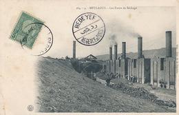 METLAOUI - N° 264 - 4 - LES FOURS DE SECHAGE - Tunisia