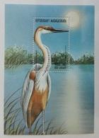 Madagascar 1999** Bl.289. Sea Bird MNH [11;43] - Birds