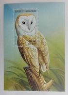 Madagascar 1999** Bl.288. An Owl MNH [11;53] - Owls