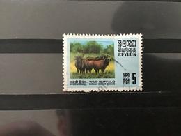 Sri Lanka - Buffels (5) 1970 - Sri Lanka (Ceylon) (1948-...)