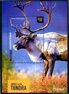 "ST. VINCENT MUSTIQUE 2014** - Animals Of Tundra - ""Caribou"" - Sheet, MNH, Come Da Scansione. - Selvaggina"