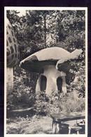 Kaatsheuvel - De Efteling - Paddenstoel - 1955 - Autres