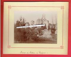 PHOTOGRAPHIE VERS 1880 RUINES DU CHATEAU DE VAUJOURS INDRE ET LOIRE - Lieux