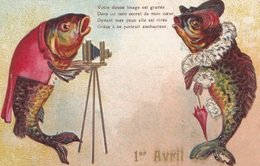 CARTE FANTAISIE. CPA GAUFREE. 1er AVRIL. ILLUSTRATION. POISSON PHOTOGRAPHE. ANNEE 1909 - 1er Avril - Poisson D'avril