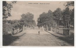 33.1125/ CASSY LANTON - Route De Lanton - France