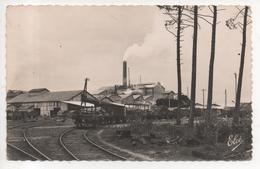 """33.1127/ FACTURE BIGANOS - L'usine De """"la Cellulose Du Pin"""" - France"""