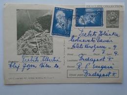 D162524  Postal Stationery  - Romania  - Pastravi Din Lacul Zanoaga Lake Trouts Fishing- Stamp  Hokusai Japan  1965 - Interi Postali