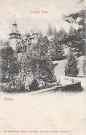 Sinaia Castelul Peles 1904 (LOT AE 25) - Roumanie