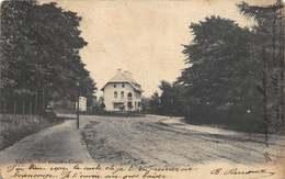 Liege Luik  Une Avenue A Cointe        I 4959 - Liege