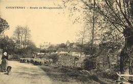 1 Cpa Courtenay - Route De Mocquesouris - Courtenay