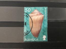 Bermuda - Schelpen (50) 2002 - Bermudes