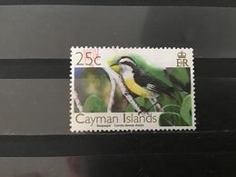 Kaaiman Eilanden / Cayman Islands - Vogels (25) 2006 - Kaaiman Eilanden