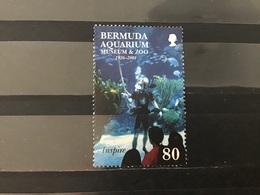 Bermuda - Aquarium (80) 2001 - Bermudes