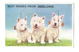 AUSTRALIA - BEST WISHES FROM GEELONG - RARE FOLDER VINTAGE POSTCARD (BG1898) - Cartes Postales