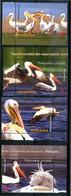 ROMANIA 2015** - Uccelli / Birds - Pellicani - 4 Val. MNH, Come Da Scansione. - Pelicans