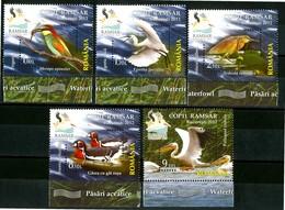 ROMANIA 2012** - Uccelli Acquatici / Waterfowl - 5 Val. MNH, Come Da Scansione. - Birds
