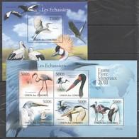 Y257 2011 UNION DES COMORES FAUNE FLORE MINERAUX BIRDS LES ECHASSIERS 1KB+1BL MNH - Birds