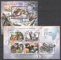 Y259 2011 UNION DES COMORES FAUNA BIRDS OWLS LES CHOUETTES ET HIBOUX 1KB+1BL MNH - Owls