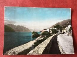 Italia Porto Di Brenzone  Lago Di Garda - Trento