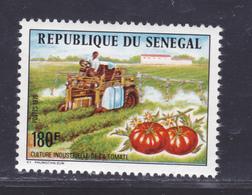 SENEGAL N°  435 ** MNH Neuf Sans Charnière, TB (D7857) Culture Industrielle De La Tomate - 1976 - Senegal (1960-...)