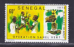 SENEGAL N°  438 ** MNH Neuf Sans Charnière, TB (D7858) Opération Sahel Vert- 1976 - Senegal (1960-...)