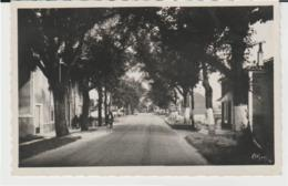 Postcard - Castillonnes - Avenue Des Pyrenees - Unused Very Good - Cartes Postales