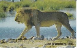TARJETA DE NAMIBIA DE UN LEON 50$ (LION) - Télécartes