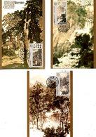 CHINE. 3 Cartes Maximum De 1994. Peintures De Fu Booshi. - Arts