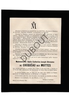 Doodsbrief Idalie De Cocquéau Des Mottes °1841 Mons/Bergen †1921 Misson/De Munck/De Wolff/De Clairbois  (H14) - Décès