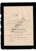 Doodsbrief Adèle Marie Ferdinande Lousbergs °1848 Mechelen †1886 (De Witte) (H15) - Décès