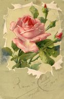 ROSA COLOR ROSA PALIDO CON PIMPOLLOS / ROSE PALE PINK - POSTAL POST CARD CIRCULATED 1904 -LILHU - Bloemen