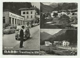 RABBI - TRENTINO - VEDUTE - VIAGGIATA FG - Trento