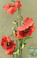 TRES FLORES ROJAS / THREE RED FLOWERS - POSTAL POSTCARD CIRCULATED 1904 -LILHU - Flowers