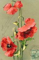 TRES FLORES ROJAS / THREE RED FLOWERS - POSTAL POSTCARD CIRCULATED 1904 -LILHU - Bloemen