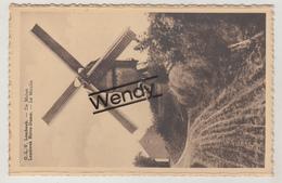 O.L.Vrouw Lombeek (windmolen) - Roosdaal