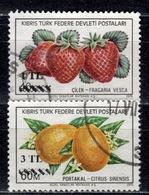 CY TR+ Türkisch Zypern 1976 Mi 31-33 Früchte - Oblitérés