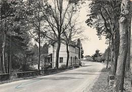 """Wellin , """" Hotel  Dewart """" , Route De Beauraing - Wellin"""