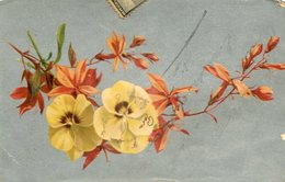 DOS FLORES VIOLA AMARILLAS / TWO VIOLA YELLOW FLOWERS- POSTAL POSTCARD CIRCULATED -LILHU - Bloemen