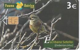 P-595 TARJETA DE ESPAÑA DEL ESCRIBANO SOTEÑO FAUNA IBERICA (BIRD-PAJARO) - Zonder Classificatie