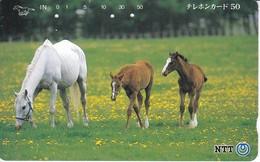 TARJETA DE JAPON DE UNOS CABALLOS (CABALLO-HORSE) - Japón