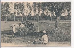 En Sologne - Le Repos - Coll. ND Phot N° 85 - Battage Fenaison Battage De Faux Attelage - France
